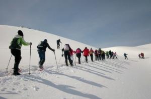 Ruta con Raquetas de nieve por 21€