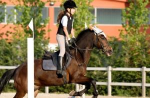 3 ó 6 clases de iniciación equitación