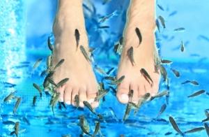 Sesión FISH PEDICURE y limpieza podal