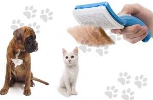 Cepillo para mascotas PetZoom